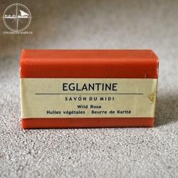 Wildrose / Eglantine