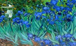 Seifendose Van Gogh Schwertlilien